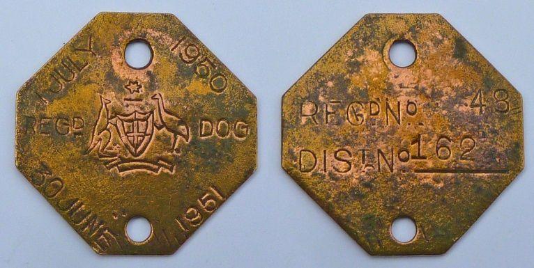 dog-disc-4